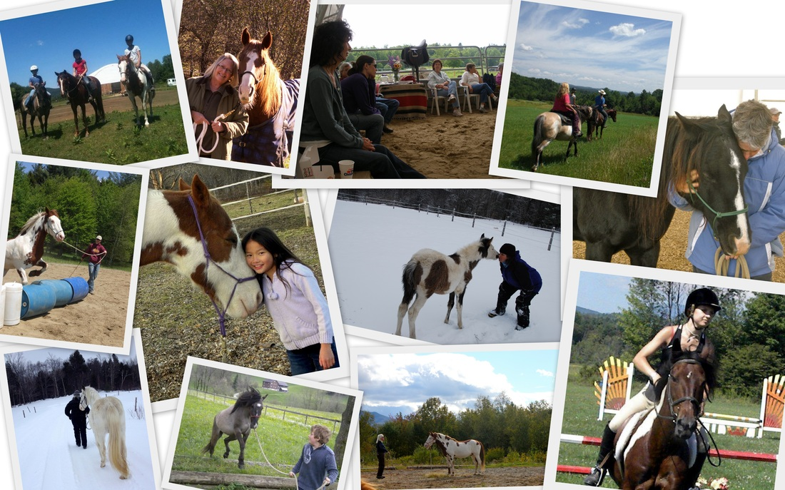 Collage of people and our Spanish Mustangs